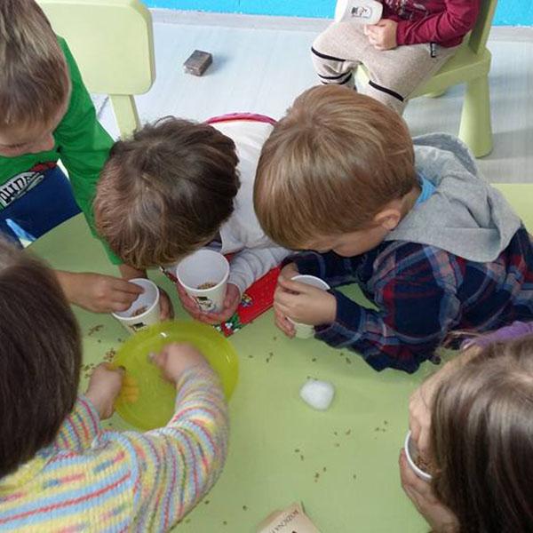 Dječji eko vrtić Šareni leptirić